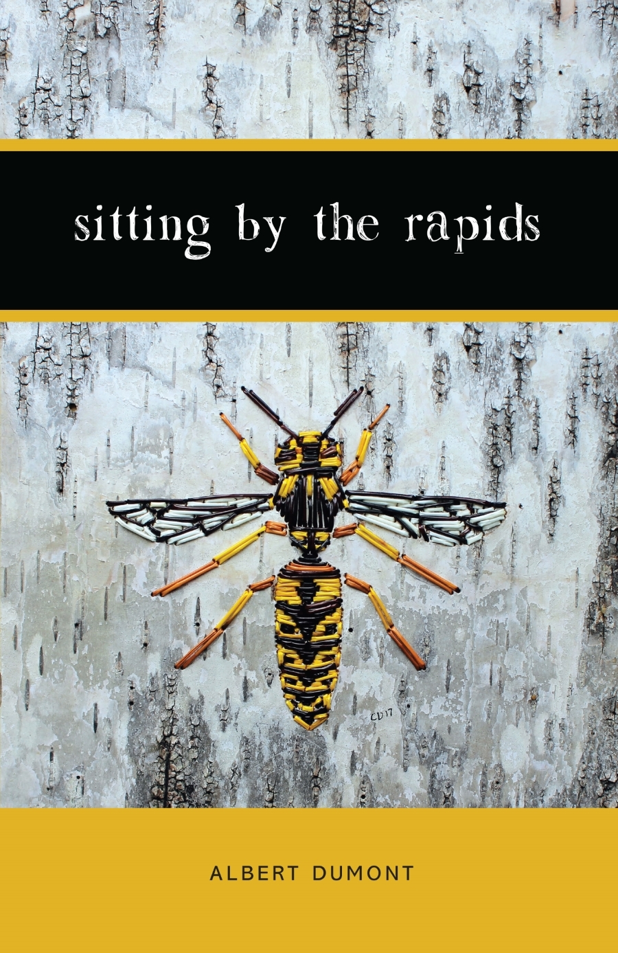 Cover of the book, Sitting by the Rapids, by Albert Dumont