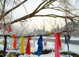 Prayer Ribbons on Victoria Island